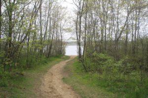 great pond trail pond view